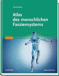Physiofachbuch Integrative Manuelle Therapie